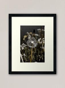 work-48507575-framed-art-print.jpg