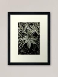 work-48081531-framed-art-print-2.jpg