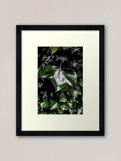 work-51594322-framed-art-print.jpg