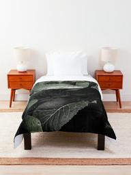 work-48087780-comforter.jpg