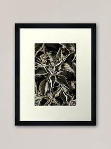 work-48508217-framed-art-print.jpg