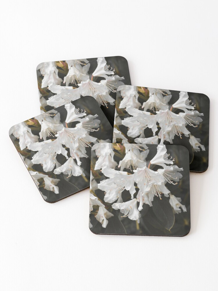 work-47935160-coasters-(set-of-4).jpg