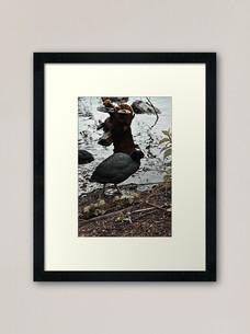 work-47959073-framed-art-print.jpg