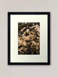 work-48090194-framed-art-print.jpg