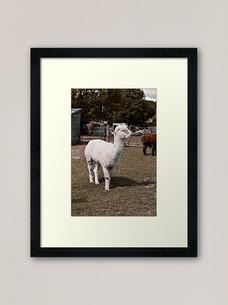 work-48510056-framed-art-print.jpg