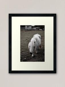 work-48507244-framed-art-print.jpg