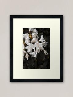 work-47935160-framed-art-print.jpg