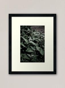 work-48506838-framed-art-print.jpg