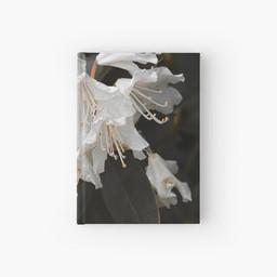 work-47935160-hardcover-journal.jpg