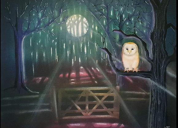 Barn Owl mixed media canvas