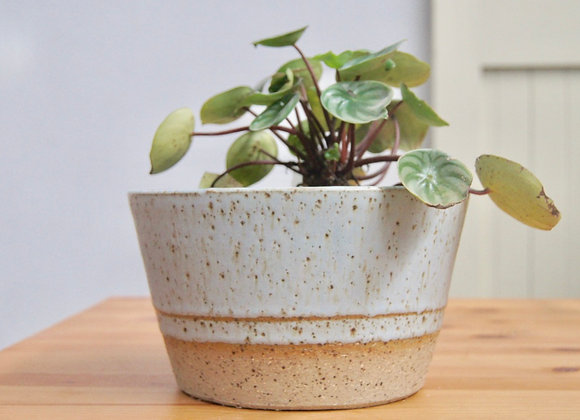 Frosted Mint Planter Large