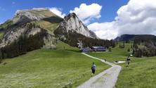 Hike | Barefoot Trail