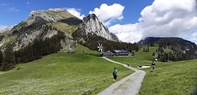 We started at the Gamplüt panorama center in Wildhaus. The trail follows the paved road for about 500 meters before it leads through alpine meadows up the mountain and ends after around 1 hour at the restaurant Gamplüt. Various signs along the way encourage to stop and enjoy the nature.