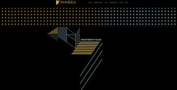 Pangea Blockchain Fund   Desktop   Investment Foucs