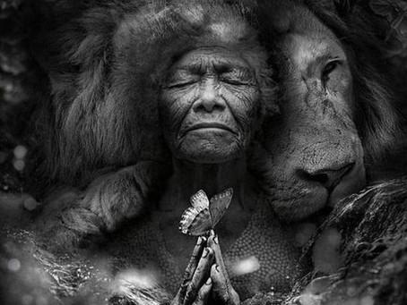 Message important des ancêtres du monde chamanique pour le mois de novembre 2020