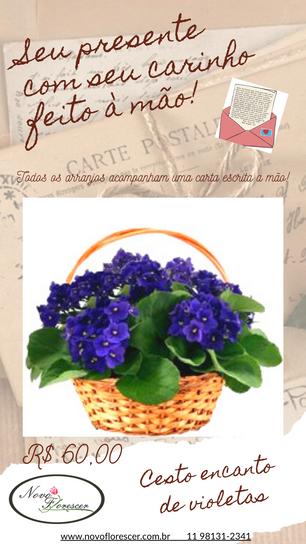 Vaso Violeta.png