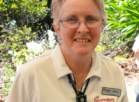 Meet Elaine, our Great Australian Baker!