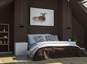 Mouflon chambre.jpg