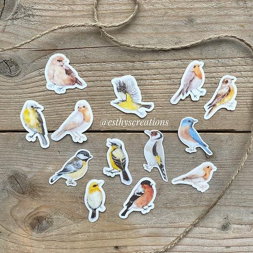 Vogel diecut washi/vellum stickers