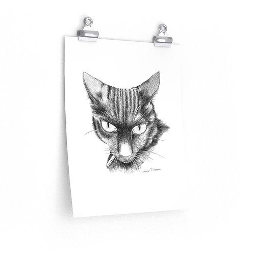Premium Matte vertical posters - Quidditch the Cat