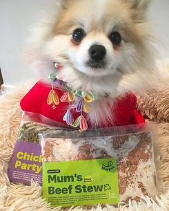 BOBO-review-of-slurpet-fresh-dog-food.jpg