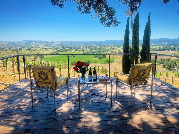 Italian Style Vineyard Wine Tasting