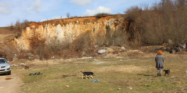 Futterstelle am alten Steinbruch
