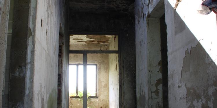Ruinen werden oft als Rückzugsort aufgesucht. Auch als Schutz vor den Jägern