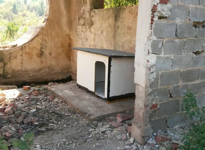 Hüttenprojekt von uns