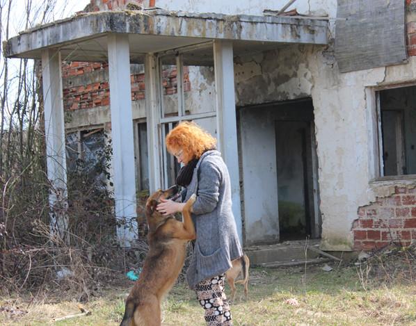 Dieser Hund zeigt deutlich seine Zuneigung