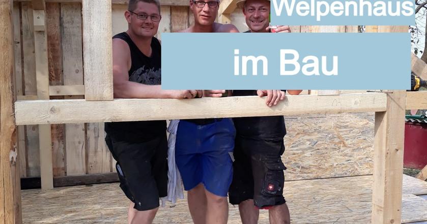 Bau des Welpenhauses