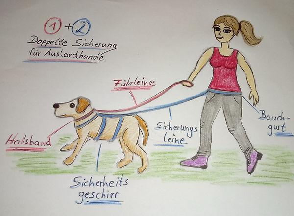 Hund doppelt sichern Zeichnung.jpeg