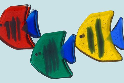 Transparent, adhesive angel fish