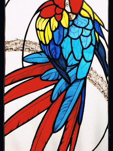 Macaw Panel