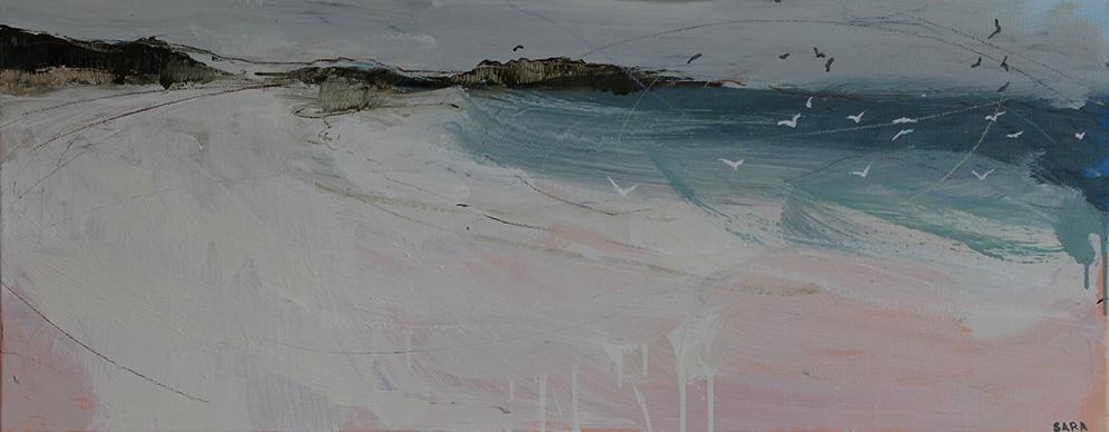 Seabirds (Great Bay, St. Martin's)