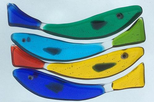 Adhesive long fish