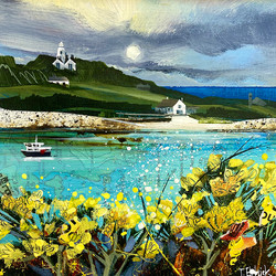St Agnes from Gugh with Gorse