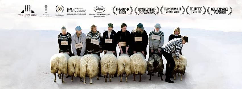 The Rams, film by Grímur Hákonarson, Netop Films, Grímar Jónsson