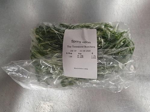 파절이 Slice spring onion