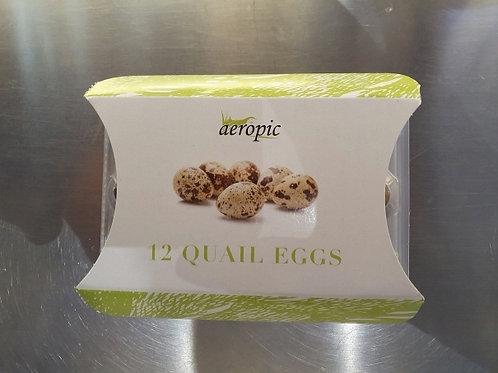 메추리 알 Quails egg