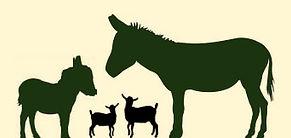 Header Image w goats.jpg