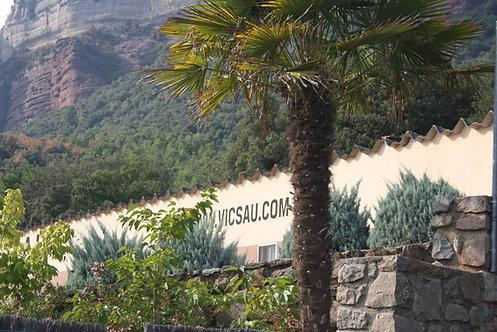 Quota trimestral: €34 // Quota Traspàs: €1.600