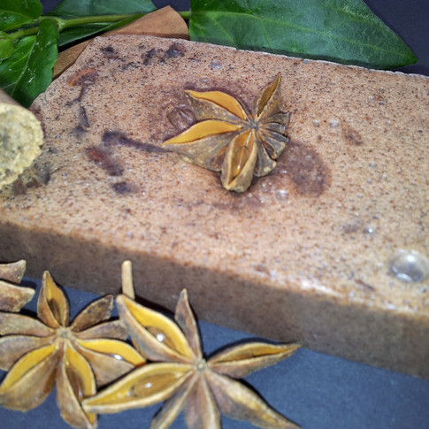 Cinnamon and Star Anise SLS Free Soap