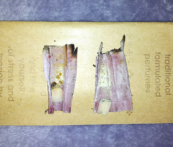 hopi ear candling results sunrise2sunset holistic therapy
