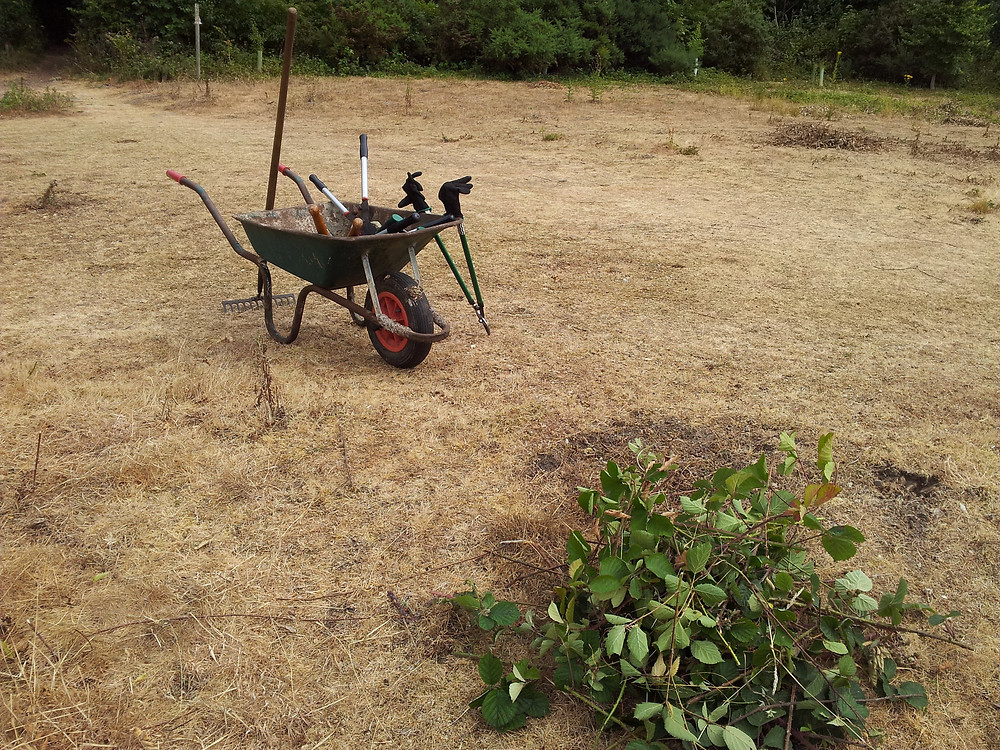 parched land corton - wheel barrow left at rest by volunteers