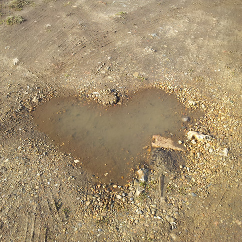 Heart Shaped Puddle in the Dirt
