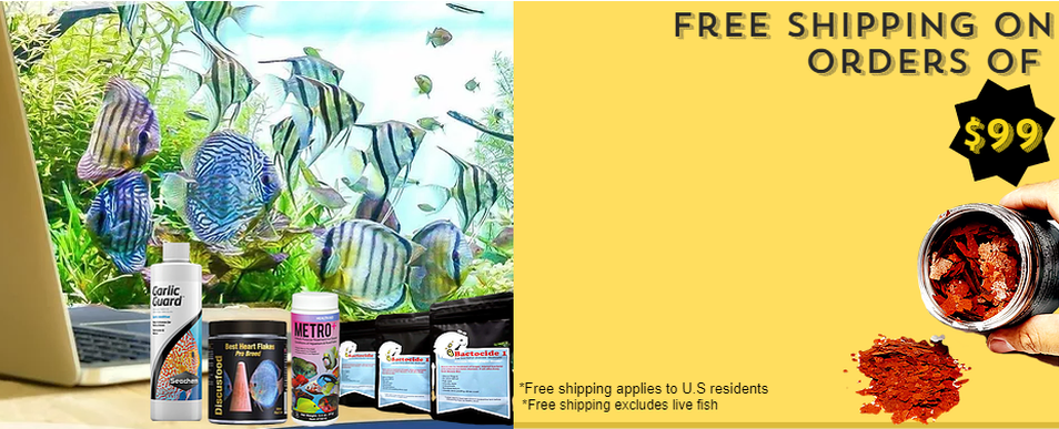 Free Shipping USA only Banner.png