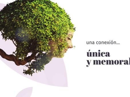URNAS KIRI