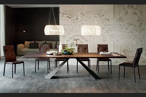 Τραπέζι Berlin 200x100εκ