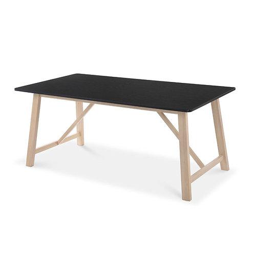 Τραπέζι 'Ibis' 180x90